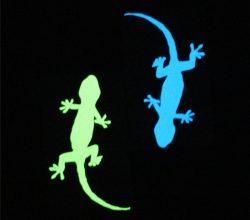 CCGID060 Glow in the dark stickers (2)