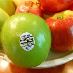 CCPPW040 fruit vegetable label (1)